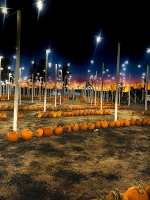 Halloween en California